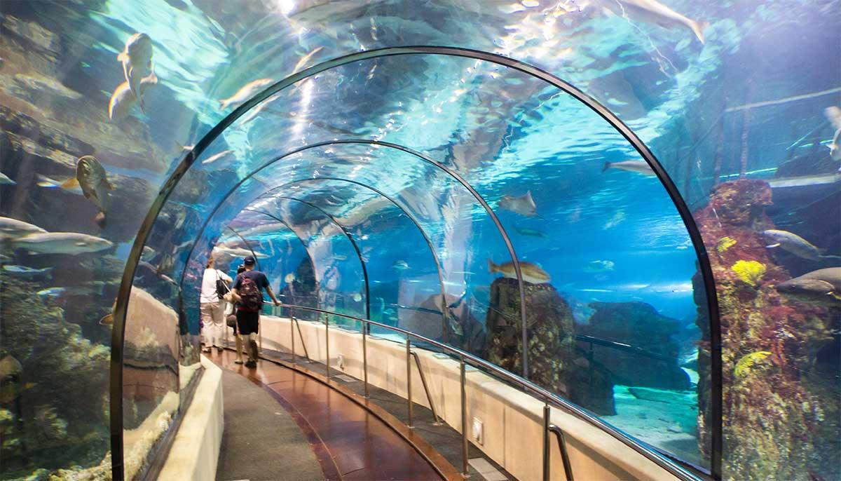 Aquarium Barcelona Spain